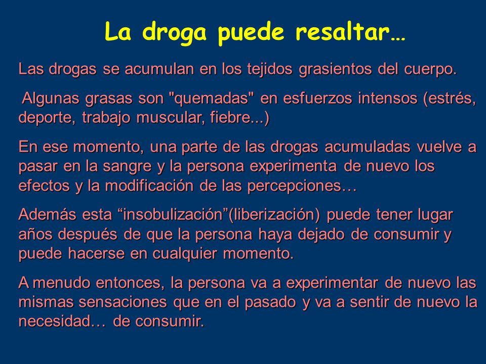 La droga puede resaltar… Las drogas se acumulan en los tejidos grasientos del cuerpo. Algunas grasas son