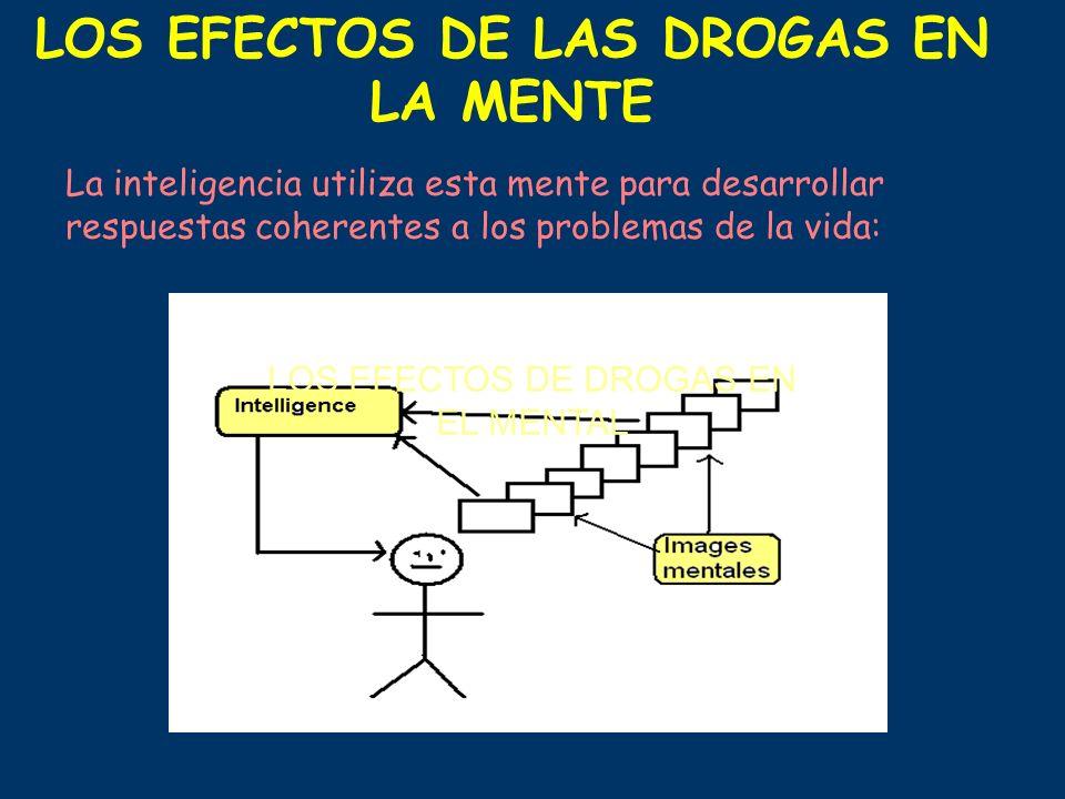 La inteligencia utiliza esta mente para desarrollar respuestas coherentes a los problemas de la vida: LOS EFECTOS DE DROGAS EN EL MENTAL LOS EFECTOS D