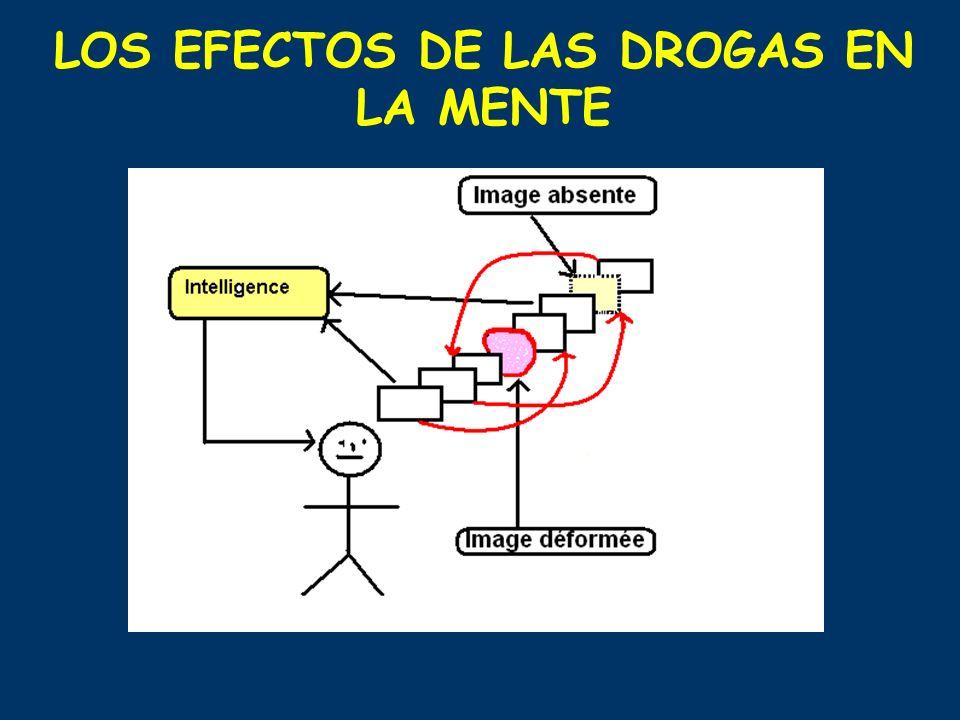 LOS EFECTOS DE LAS DROGAS EN LA MENTE