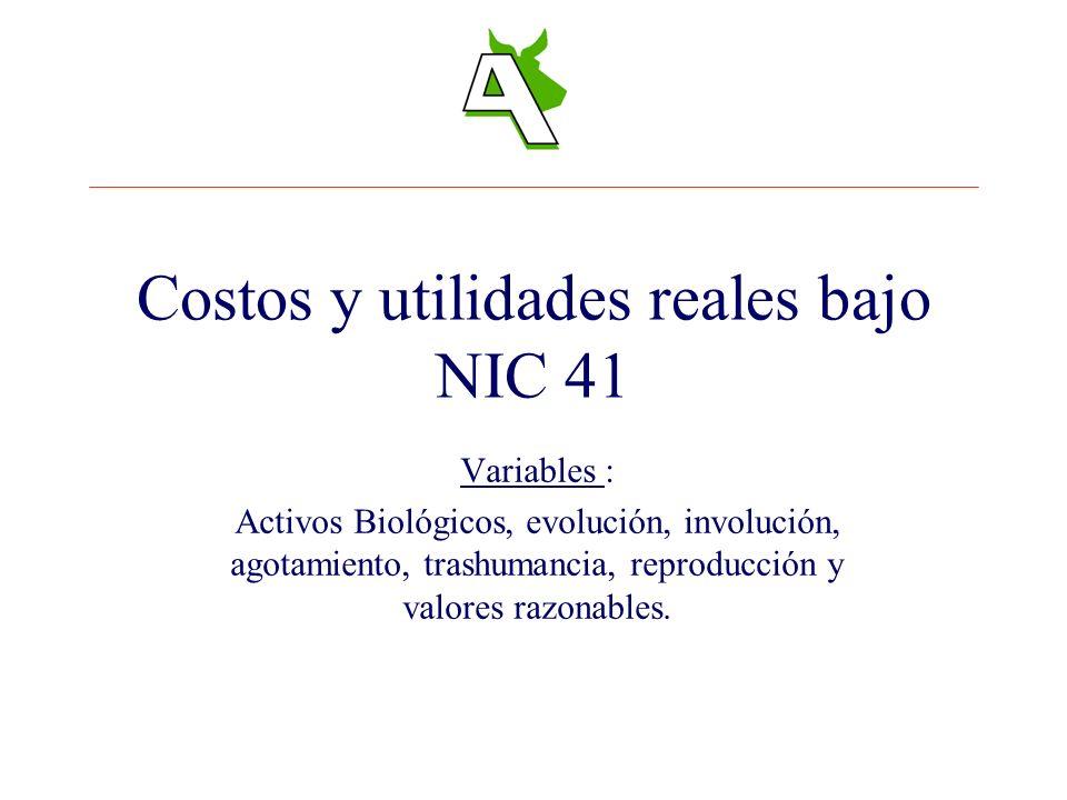 Costos y utilidades reales bajo NIC 41 Variables : Activos Biológicos, evolución, involución, agotamiento, trashumancia, reproducción y valores razona