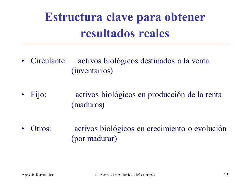 Agroinformaticaasesores tributarios del campo15 Estructura clave para obtener resultados reales Circulante: activos biológicos destinados a la venta (