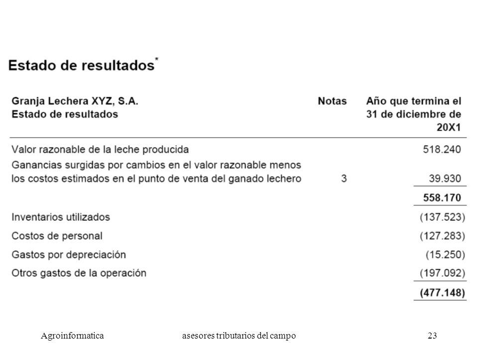 Agroinformaticaasesores tributarios del campo23 Ejemplo de Estado de Resultados