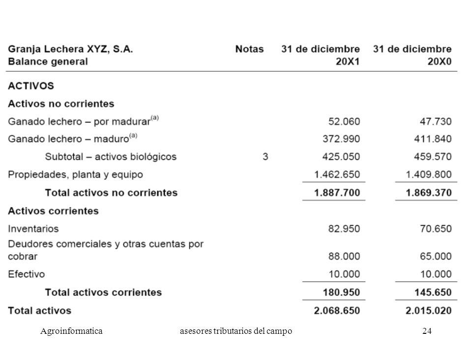 Agroinformaticaasesores tributarios del campo24 Ejemplo de Estado de Resultados
