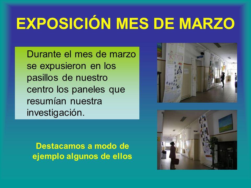 EXPOSICIÓN MES DE MARZO Se expuso a todos los grupos implicados en el proceso un audiovisual que recogía fotos, grabaciones de audio y videos de nuest