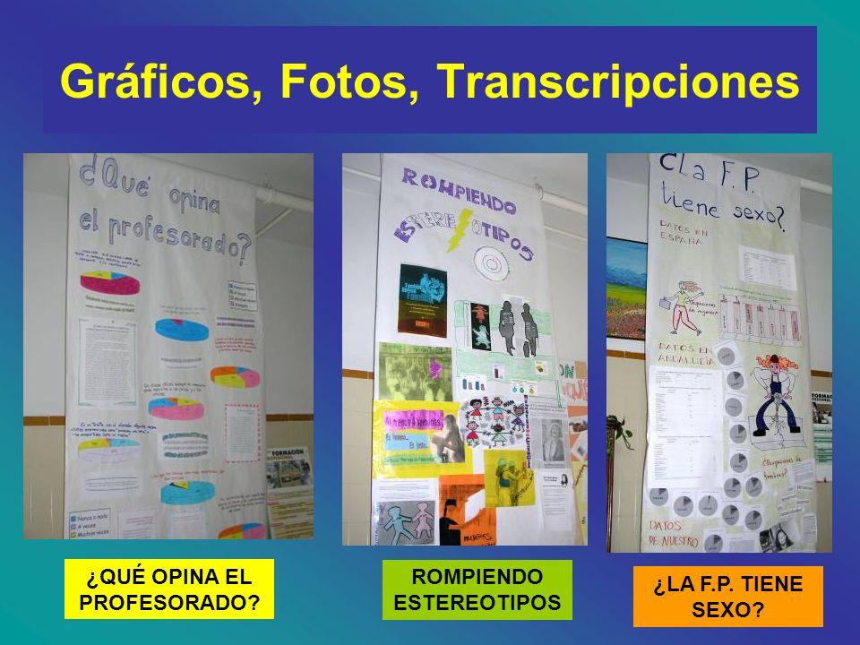 EXPOSICIÓN MES DE MARZO Durante el mes de marzo se expusieron en los pasillos de nuestro centro los paneles que resumían nuestra investigación.