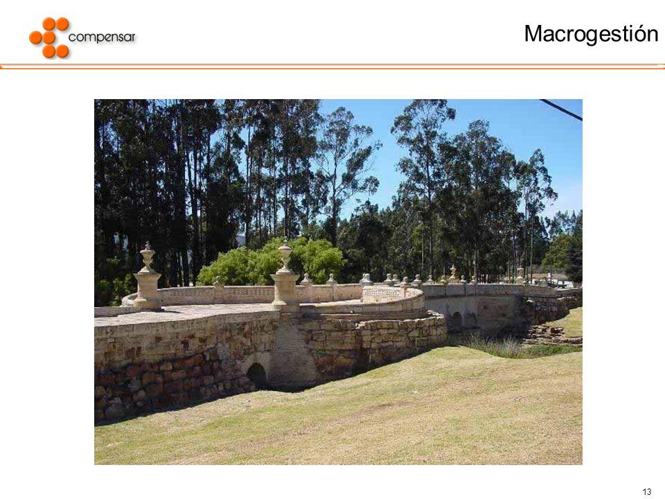 13 Macrogestión