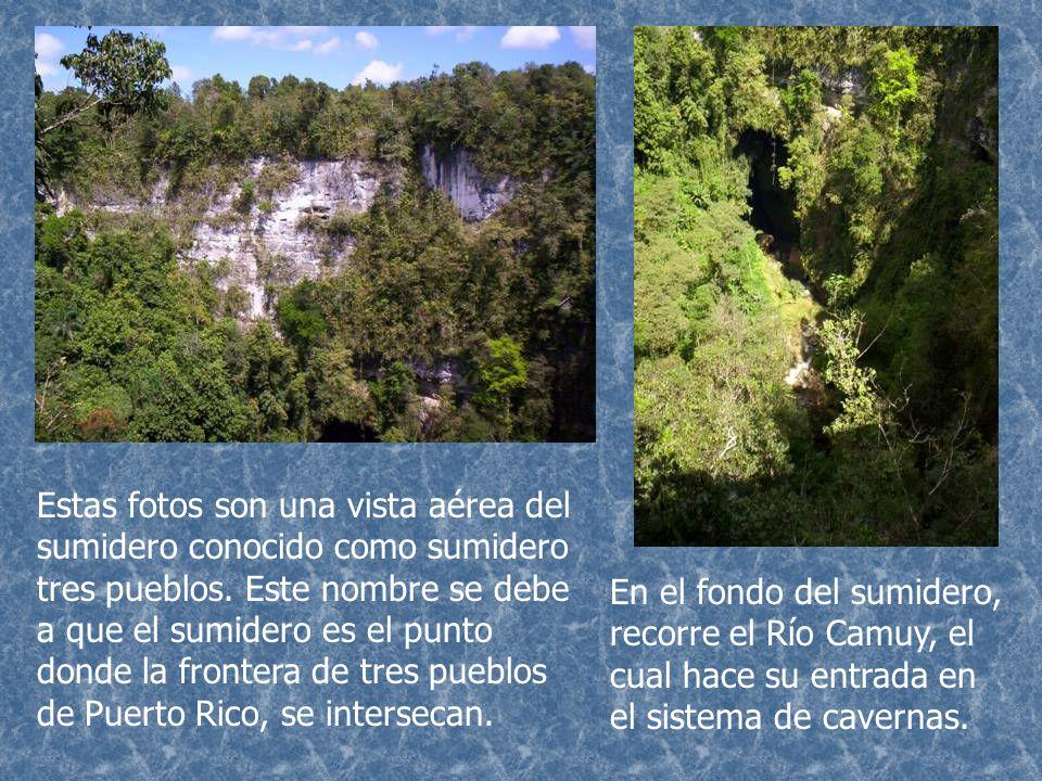 Dentro de las cuevas y cavernas del mundo, podemos encontrar distintos depósitos de rocas preciosas y semipreciosas.