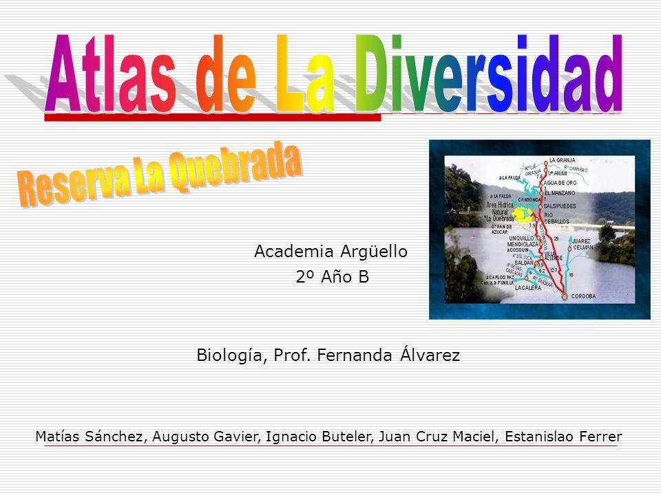 Academia Argüello Matías Sánchez, Augusto Gavier, Ignacio Buteler, Juan Cruz Maciel, Estanislao Ferrer 2º Año B Biología, Prof. Fernanda Álvarez
