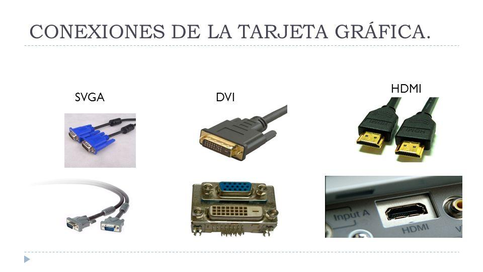 CONEXIONES DE LA TARJETA GRÁFICA. SVGADVI HDMI