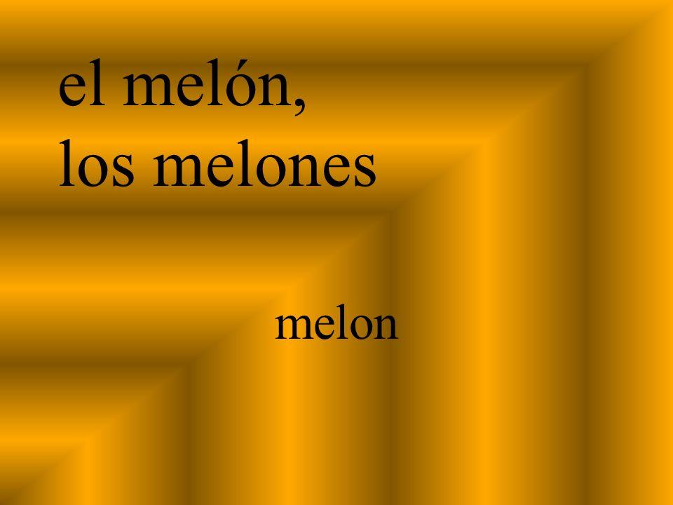 el melón, los melones melon