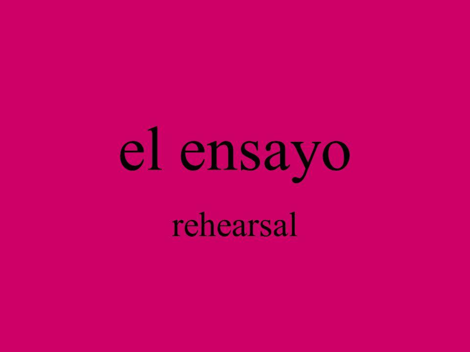 el (la) cantante singer