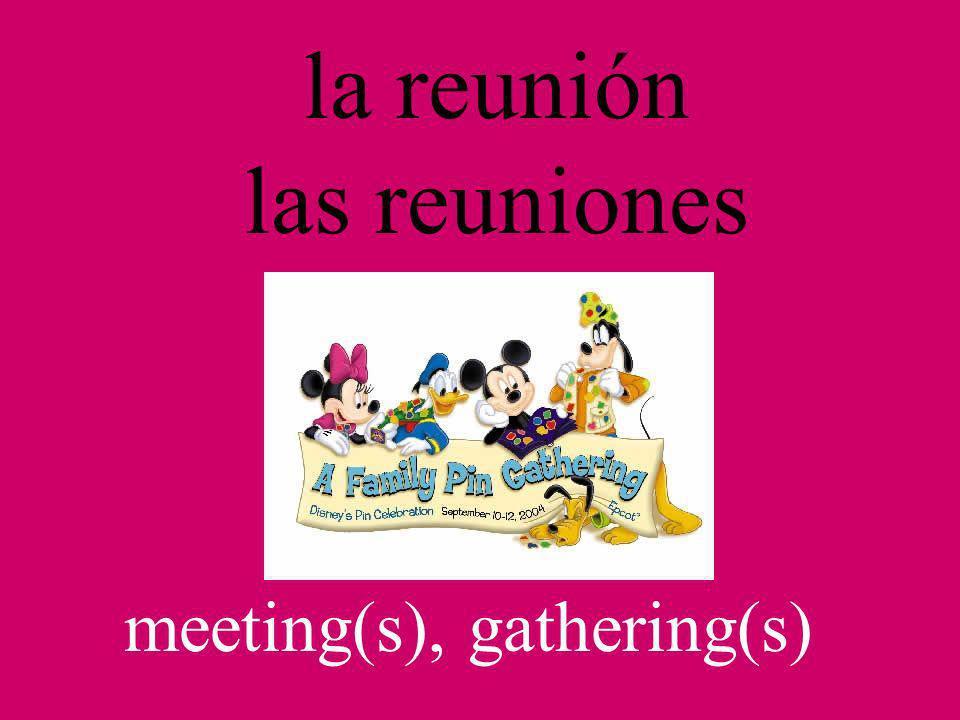 la reunión las reuniones meeting(s), gathering(s)