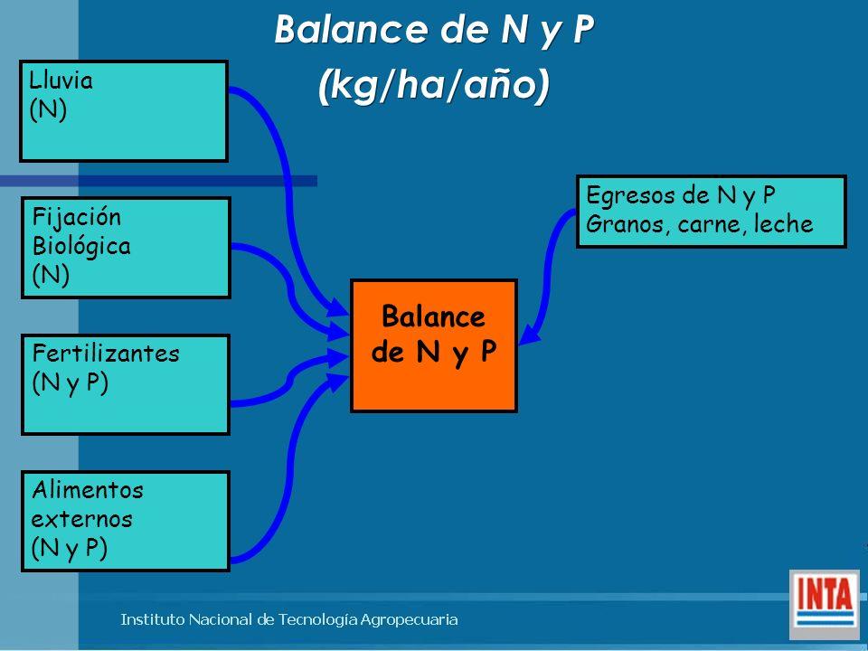 Balance de N y P (kg/ha/año) Balance de N y P (kg/ha/año) Lluvia (N) Fijación Biológica (N) Fertilizantes (N y P) Alimentos externos (N y P) Egresos d