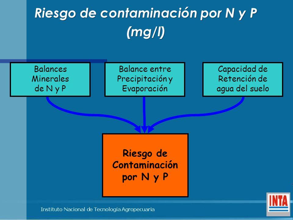 Riesgo de contaminación por N y P (mg/l) Riesgo de contaminación por N y P (mg/l) Riesgo de Contaminación por N y P Balances Minerales de N y P Balanc