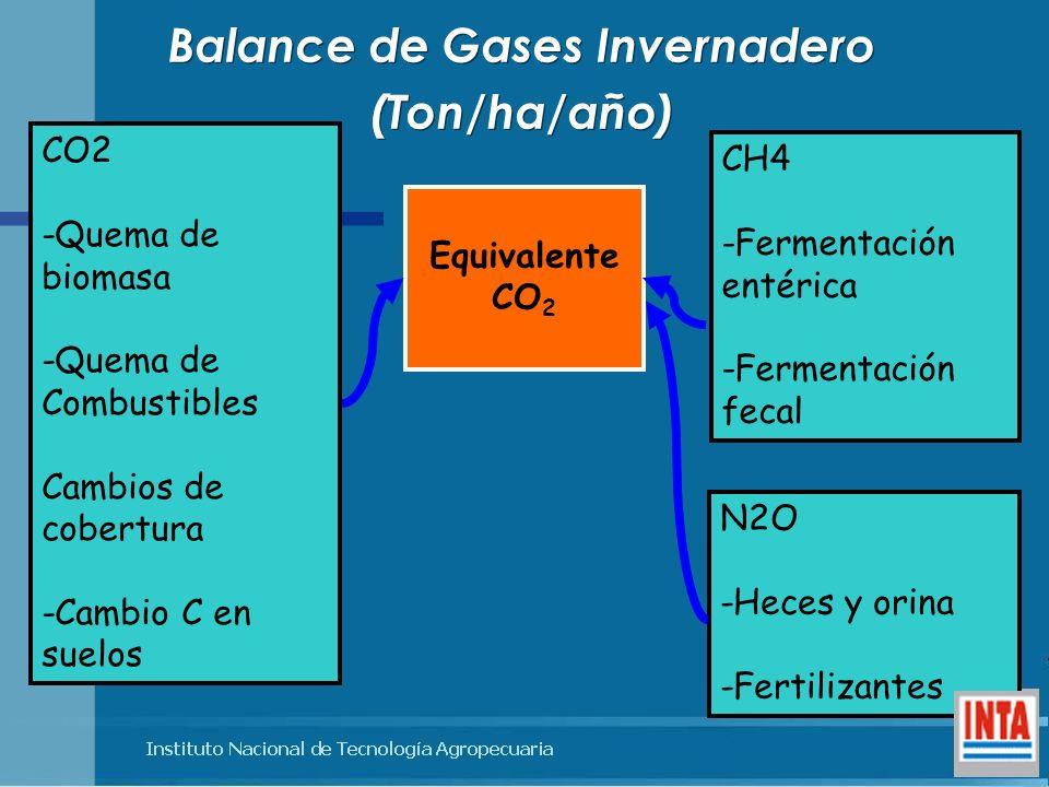 Balance de Gases Invernadero (Ton/ha/año) Balance de Gases Invernadero (Ton/ha/año) CH4 -Fermentación entérica -Fermentación fecal N2O -Heces y orina