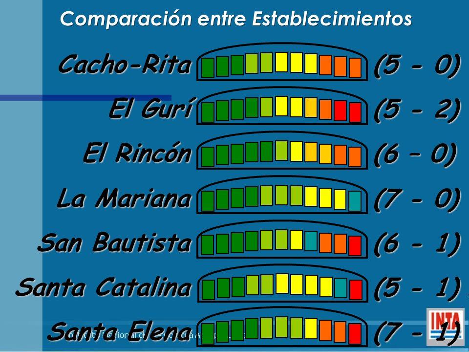 Cacho-Rita El Gurí El Rincón La Mariana San Bautista Santa Catalina Santa Elena (5 - 0) (5 - 2) (6 – 0) (7 - 0) (6 - 1) (5 - 1) (7 - 1) Comparación en