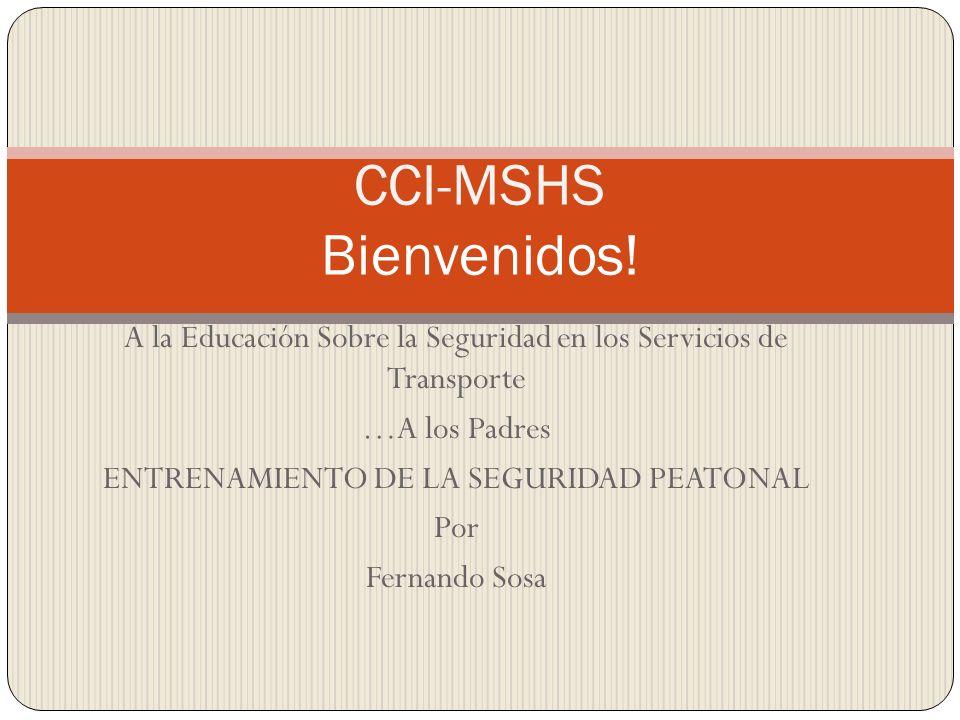 A la Educación Sobre la Seguridad en los Servicios de Transporte …A los Padres ENTRENAMIENTO DE LA SEGURIDAD PEATONAL Por Fernando Sosa CCI-MSHS Bienv