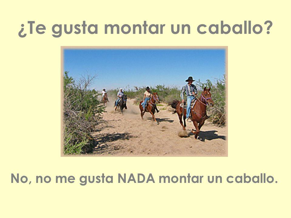 ¿Te gusta montar un caballo? No, no me gusta NADA montar un caballo.