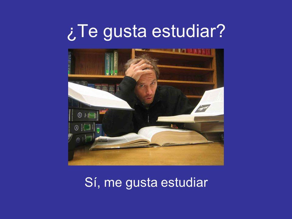 ¿Te gusta estudiar? Sí, me gusta estudiar
