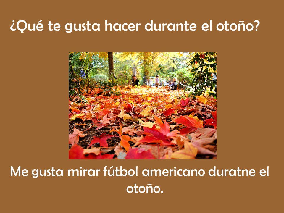 ¿Qué te gusta hacer durante el otoño? Me gusta mirar fútbol americano duratne el otoño.