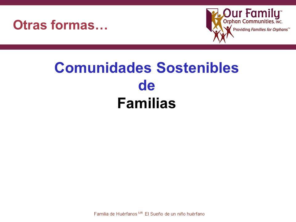 Otras formas… 50 Familia de Huérfanos MR El Sueño de un niño huérfano Comunidades Sostenibles de Familias
