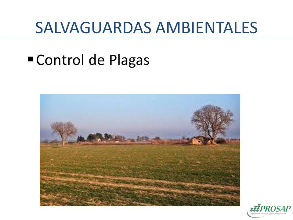 SALVAGUARDAS AMBIENTALES Control de Plagas