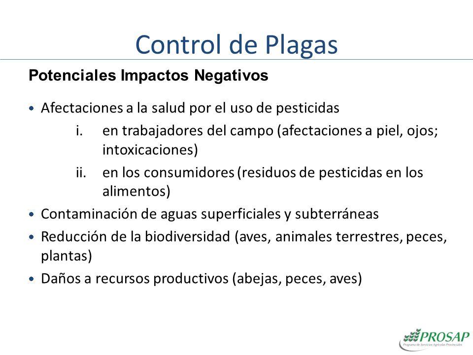 Control de Plagas Potenciales Impactos Negativos Afectaciones a la salud por el uso de pesticidas i.en trabajadores del campo (afectaciones a piel, oj