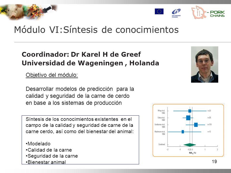 19 Coordinador: Dr Karel H de Greef Universidad de Wageningen, Holanda Módulo VI:Síntesis de conocimientos Objetivo del módulo: Desarrollar modelos de