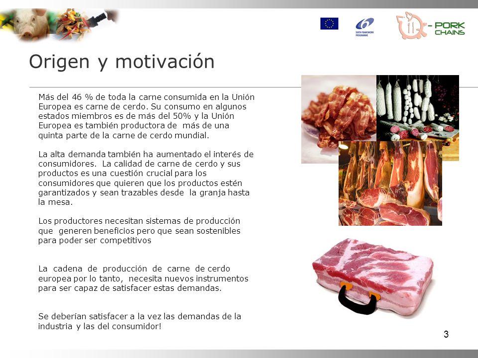 3 Origen y motivación Más del 46 % de toda la carne consumida en la Unión Europea es carne de cerdo. Su consumo en algunos estados miembros es de más