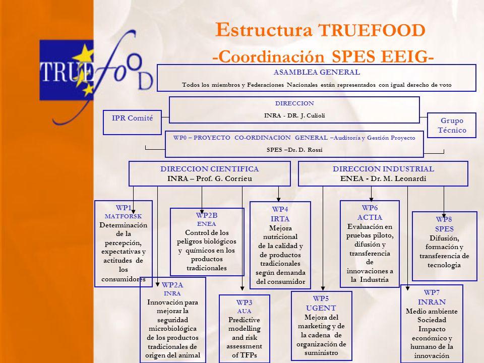 WP0 – PROYECTO CO-ORDINACION GENERAL –Auditoría y Gestión Proyecto SPES –Dr.
