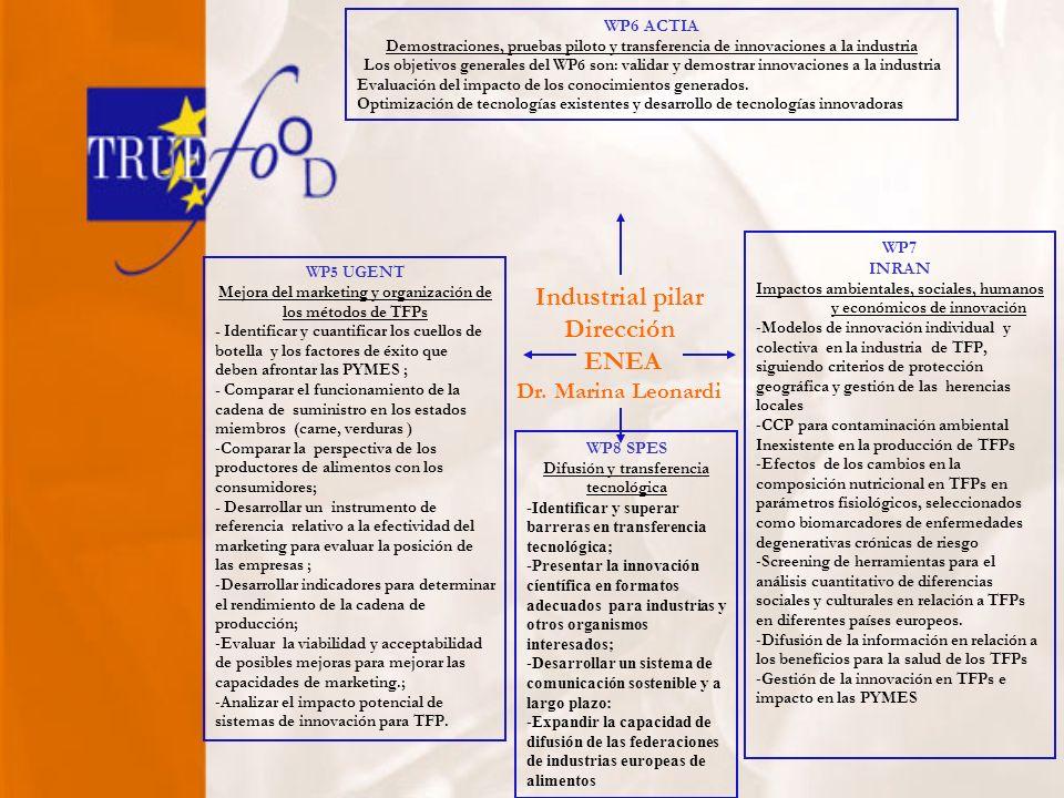 Industrial pilar Dirección ENEA Dr.