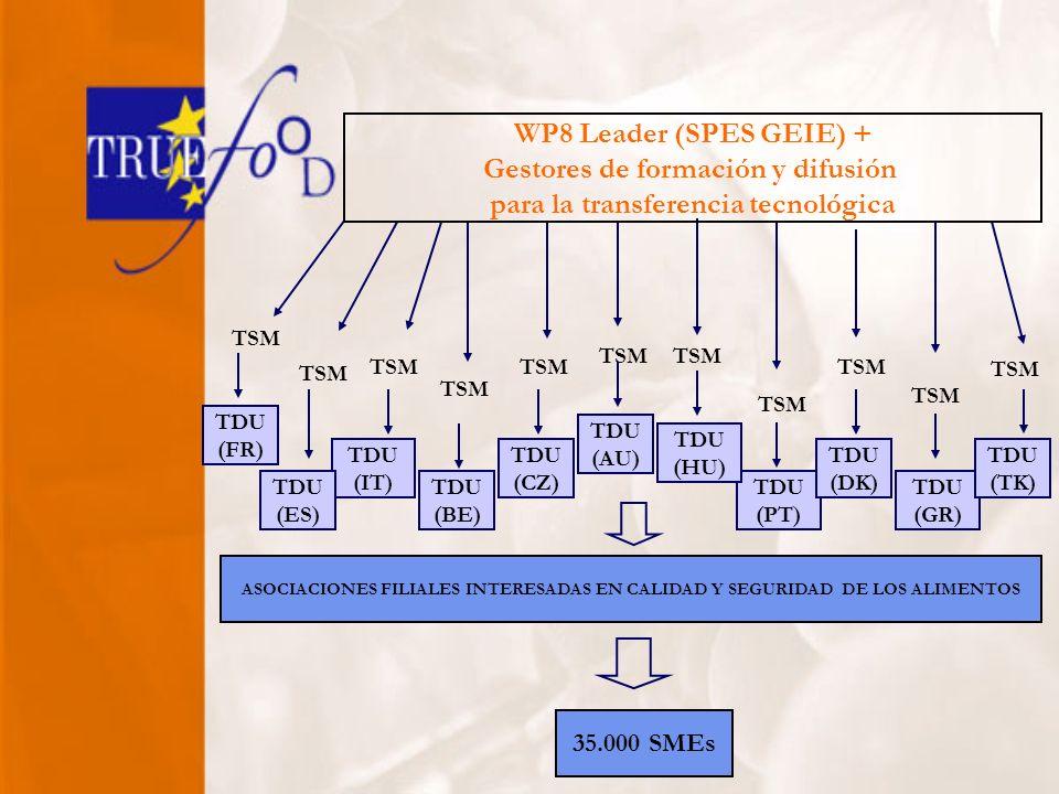 TDU (PT) TDU (DK) TDU (GR) TDU (TK) TDU (HU) TDU (AU) TDU (CZ) TDU (BE) TDU (IT) TDU (ES) TSM WP8 Leader (SPES GEIE) + Gestores de formación y difusión para la transferencia tecnológica ASOCIACIONES FILIALES INTERESADAS EN CALIDAD Y SEGURIDAD DE LOS ALIMENTOS TDU (FR) TSM 35.000 SMEs