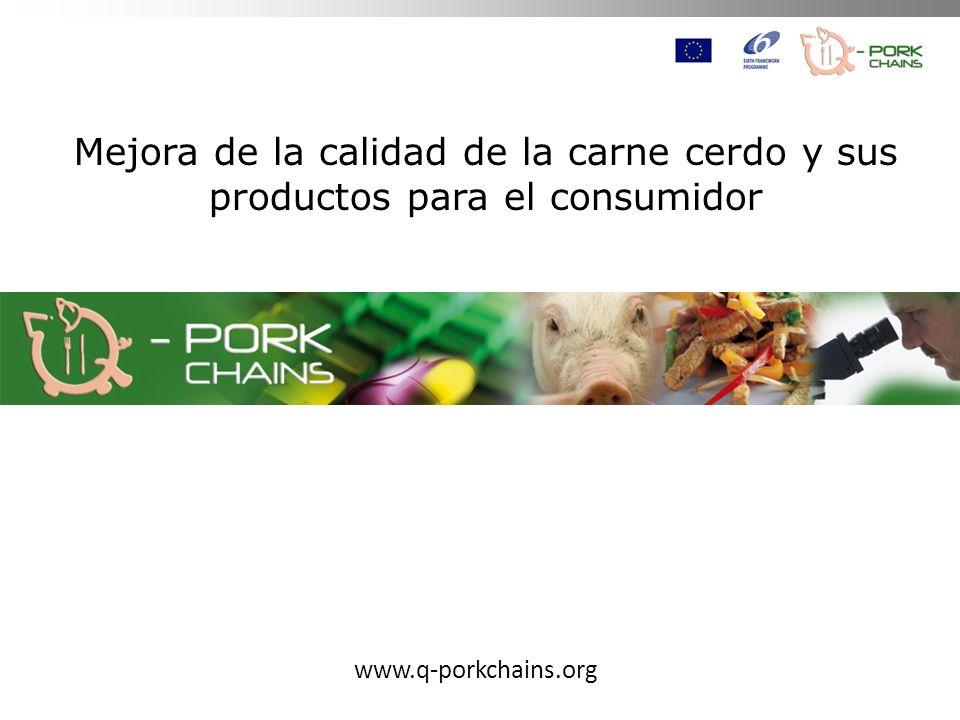Mejora de la calidad de la carne cerdo y sus productos para el consumidor www.q-porkchains.org
