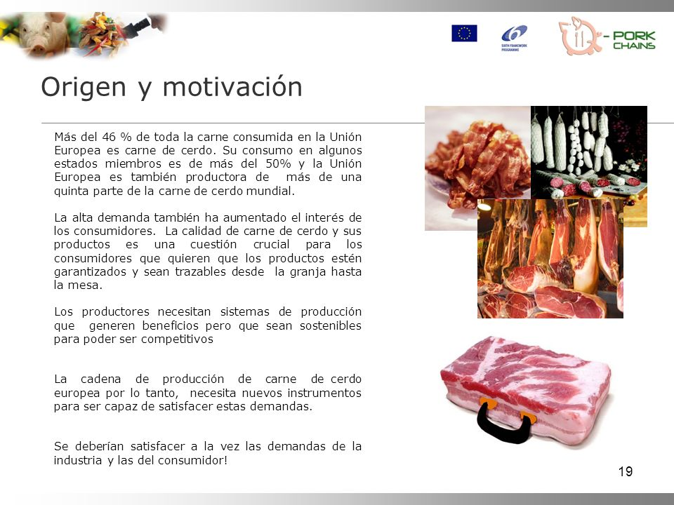 19 Origen y motivación Más del 46 % de toda la carne consumida en la Unión Europea es carne de cerdo.