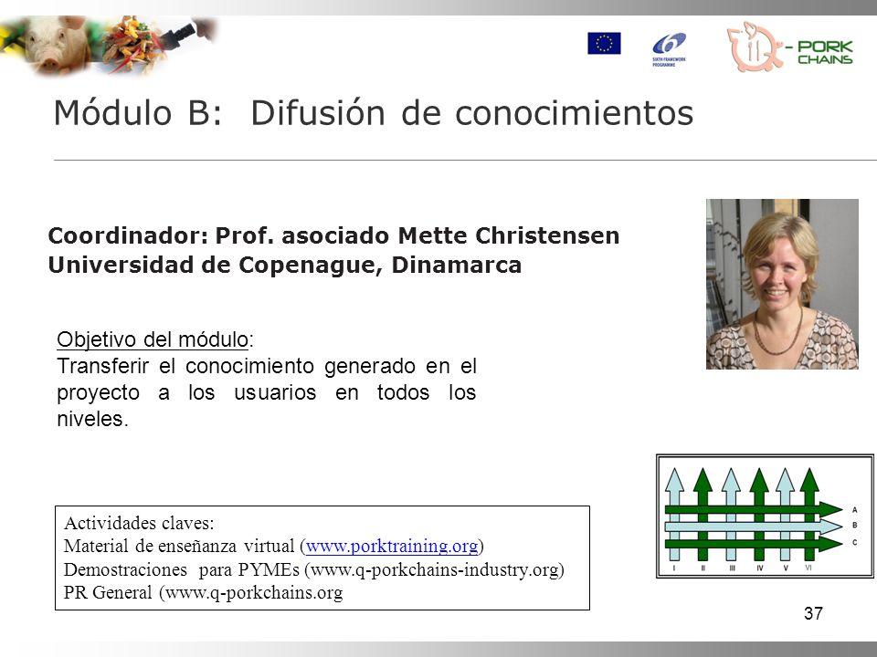 37 Coordinador: Prof.