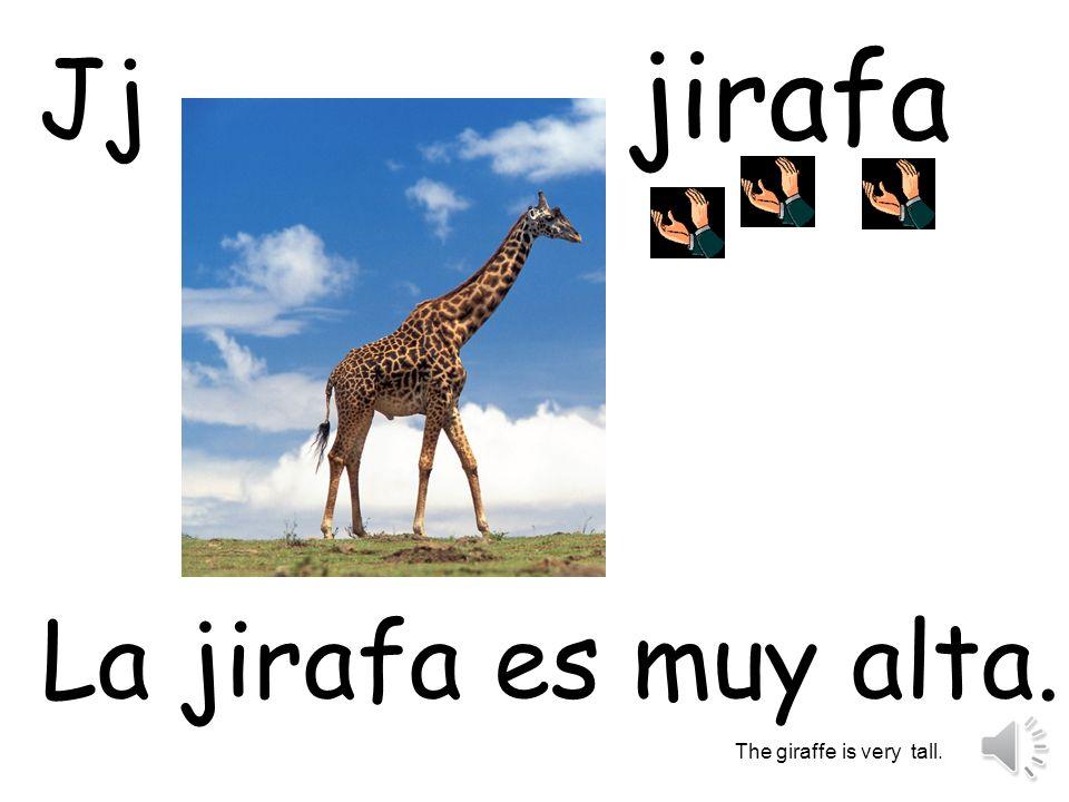 jirafa La jirafa es muy alta. The giraffe is very tall. Jj
