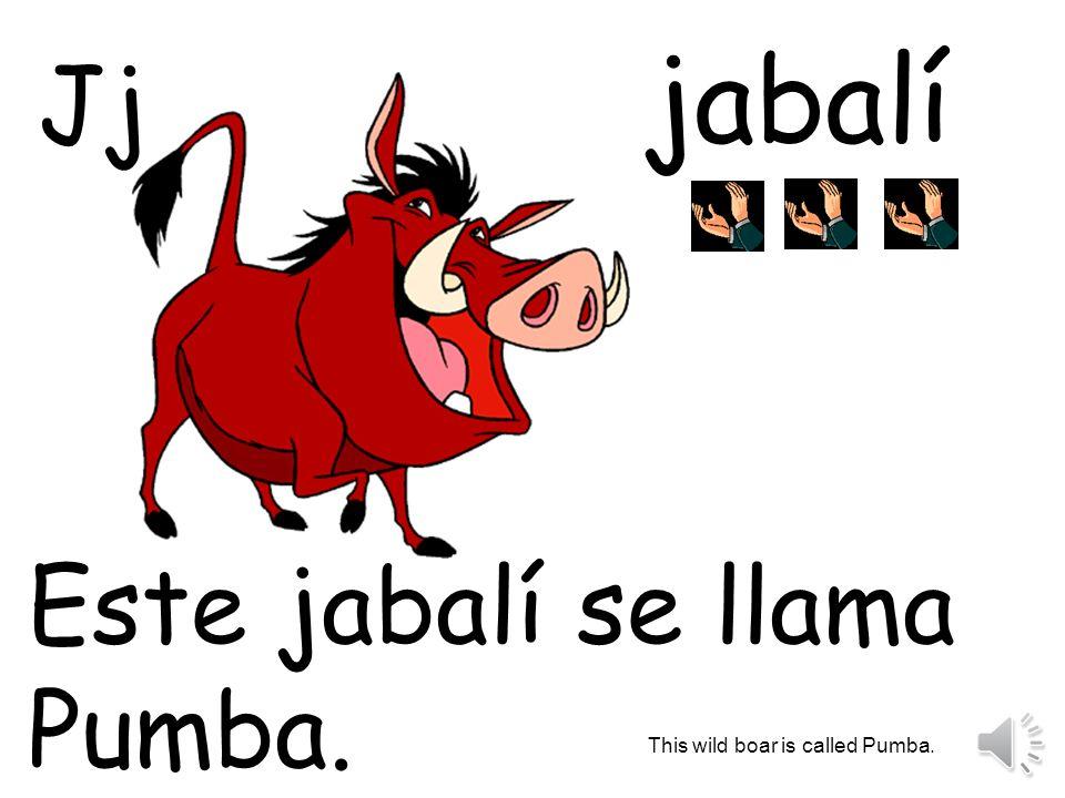 jabalí Este jabalí se llama Pumba. This wild boar is called Pumba. Jj