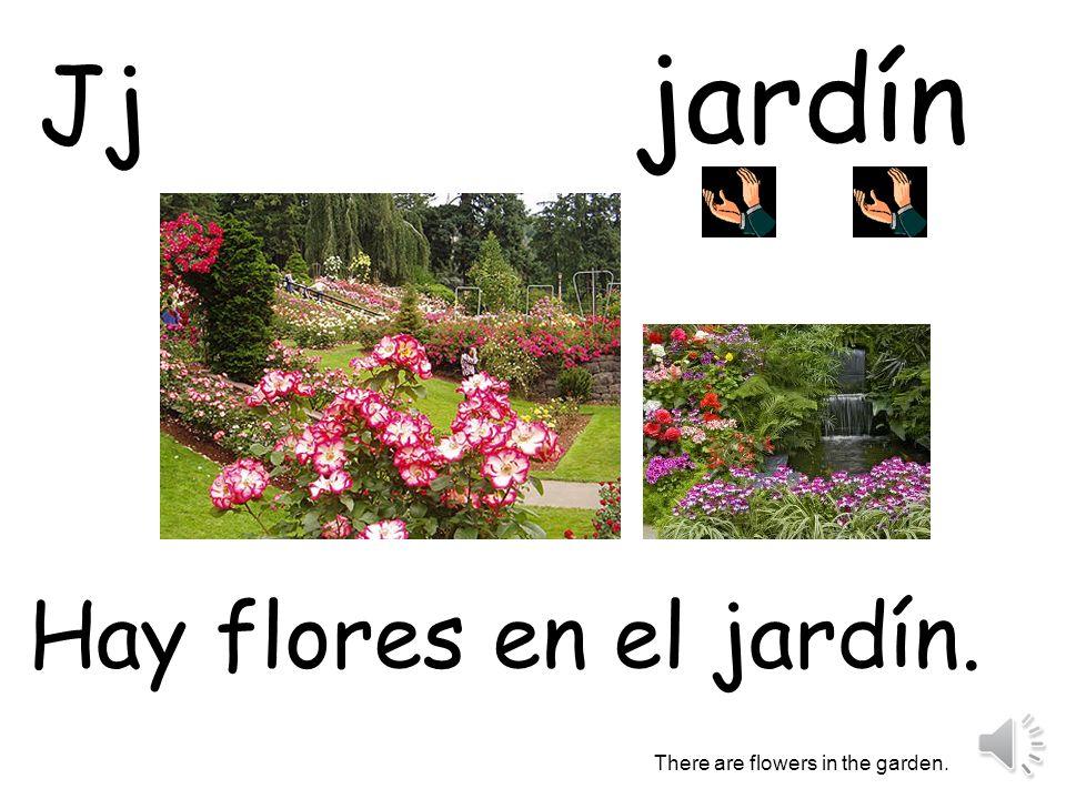 jardín Hay flores en el jardín. There are flowers in the garden. Jj