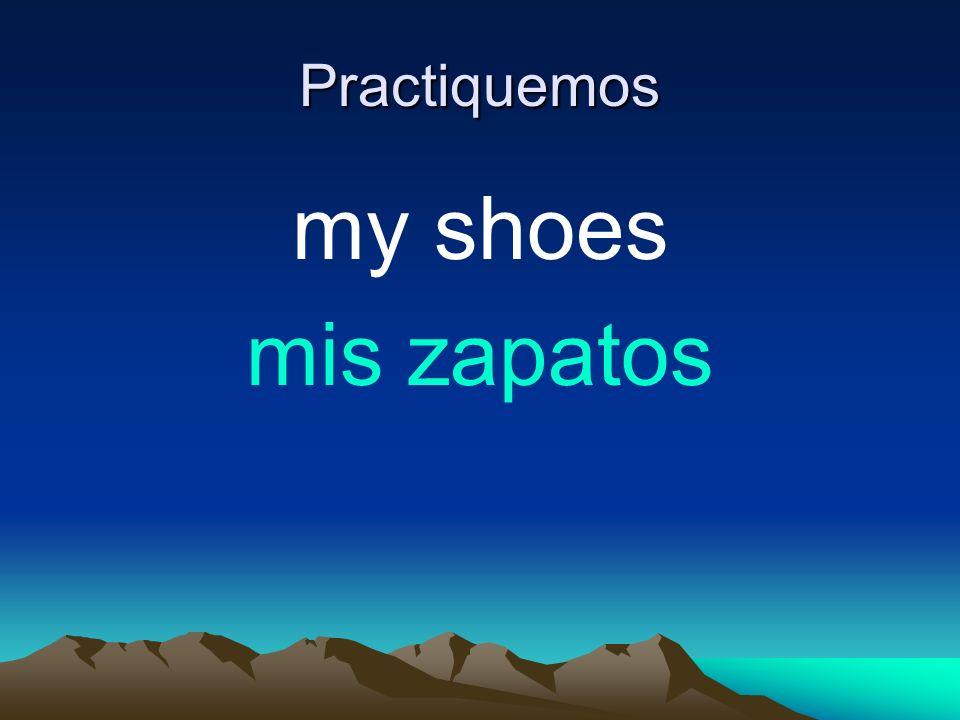Practiquemos my shoes mis zapatos