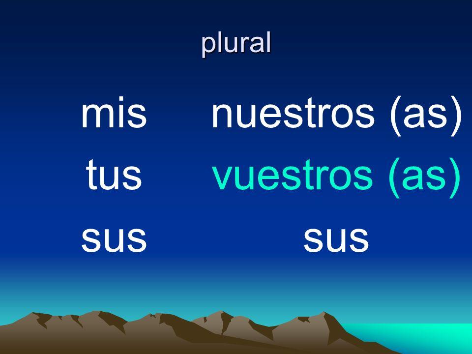 plural mis tus sus nuestros (as) vuestros (as) sus