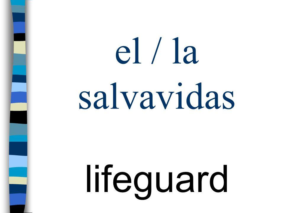 el / la salvavidas lifeguard