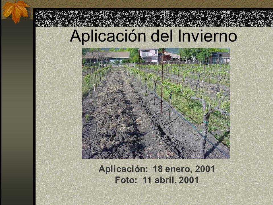 Aplicación del Invierno Aplicación: 18 enero, 2001 Foto: 11 abril, 2001