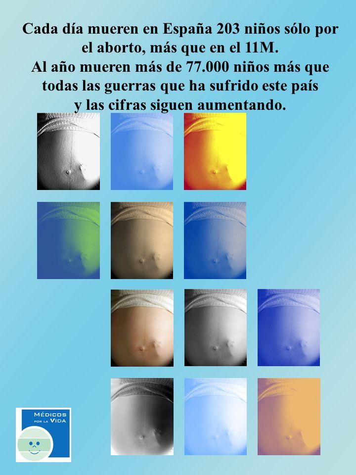 Cada día mueren en España 203 niños sólo por el aborto, más que en el 11M. Al año mueren más de 77.000 niños más que todas las guerras que ha sufrido
