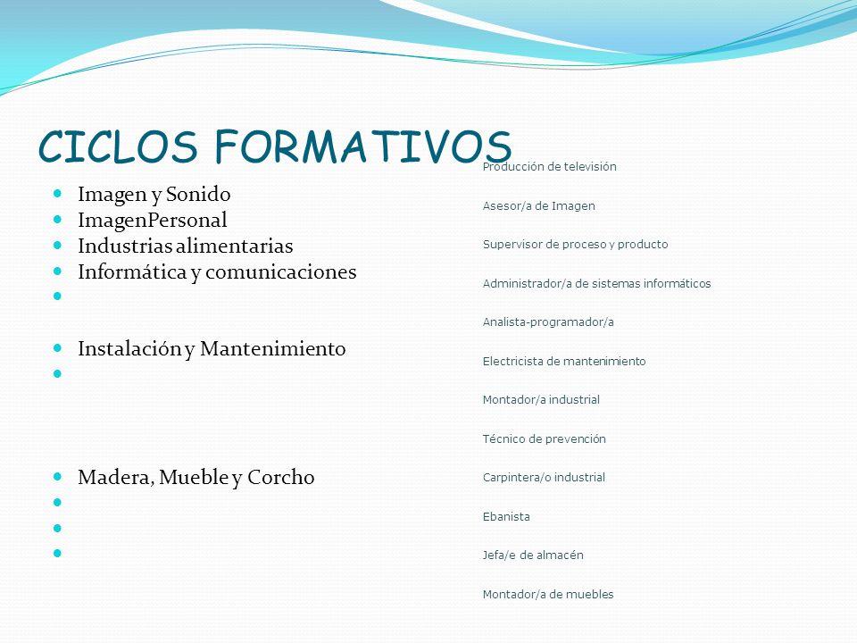 CICLOS FORMATIVOS Imagen y Sonido ImagenPersonal Industrias alimentarias Informática y comunicaciones Instalación y Mantenimiento Madera, Mueble y Cor