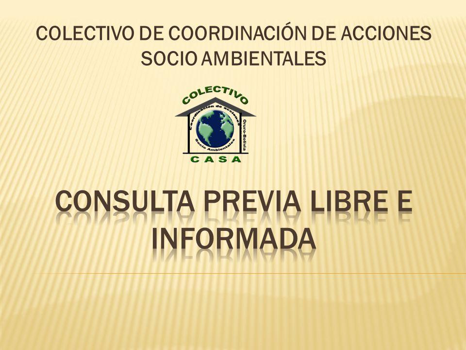 COLECTIVO DE COORDINACIÓN DE ACCIONES SOCIO AMBIENTALES