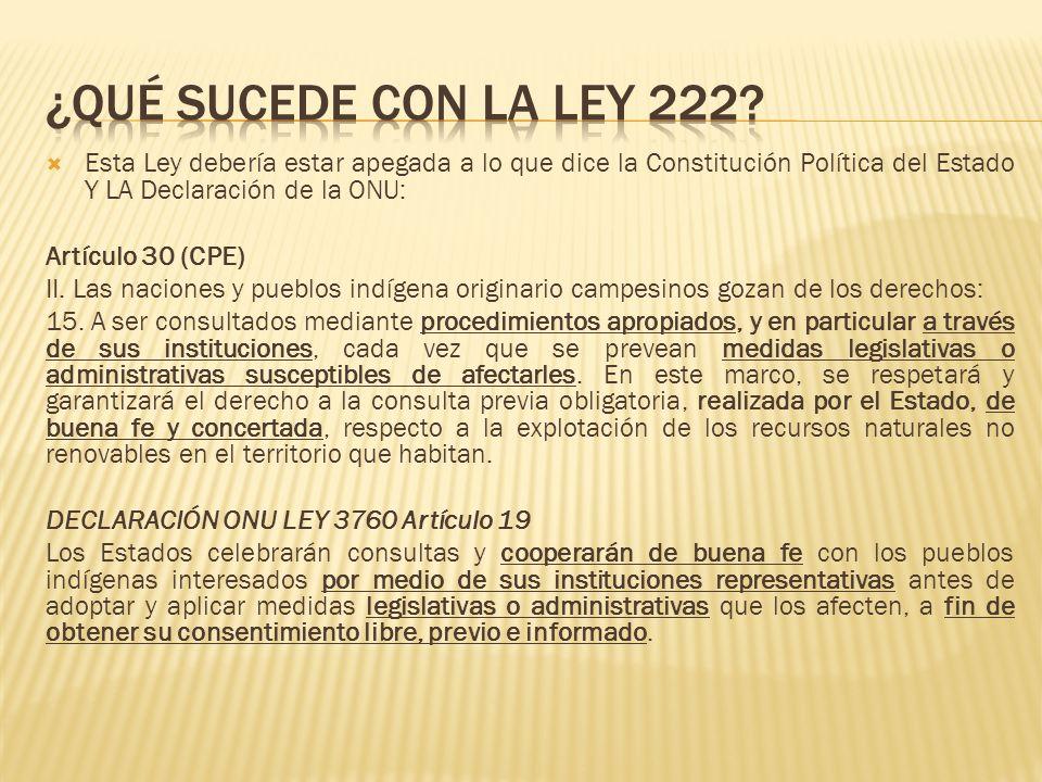Esta Ley debería estar apegada a lo que dice la Constitución Política del Estado Y LA Declaración de la ONU: Artículo 30 (CPE) II.