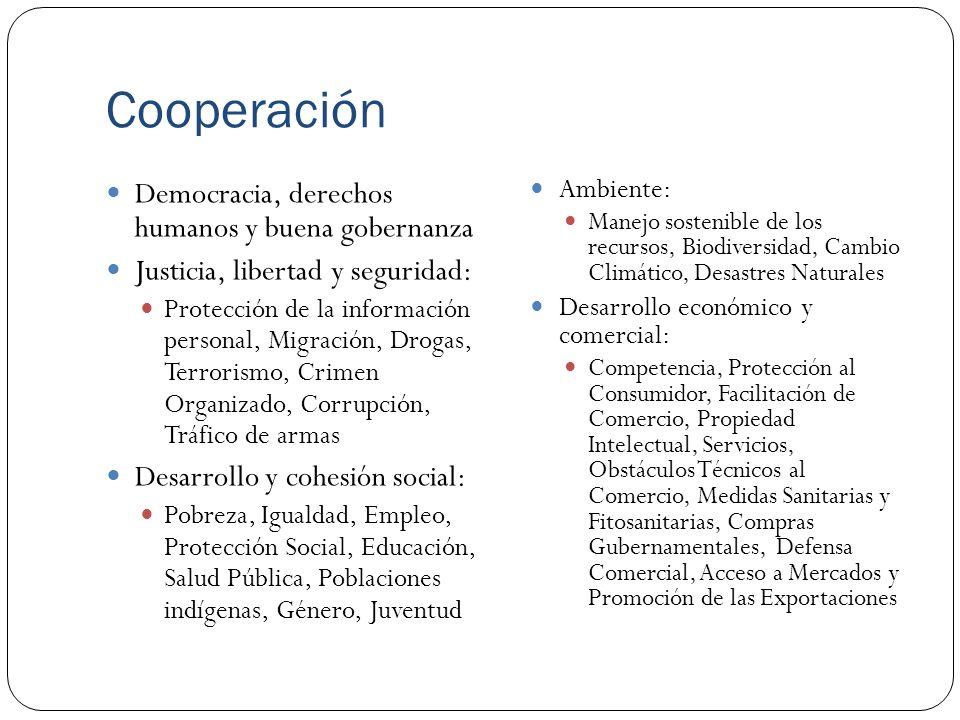 Cooperación Democracia, derechos humanos y buena gobernanza Justicia, libertad y seguridad: Protección de la información personal, Migración, Drogas,
