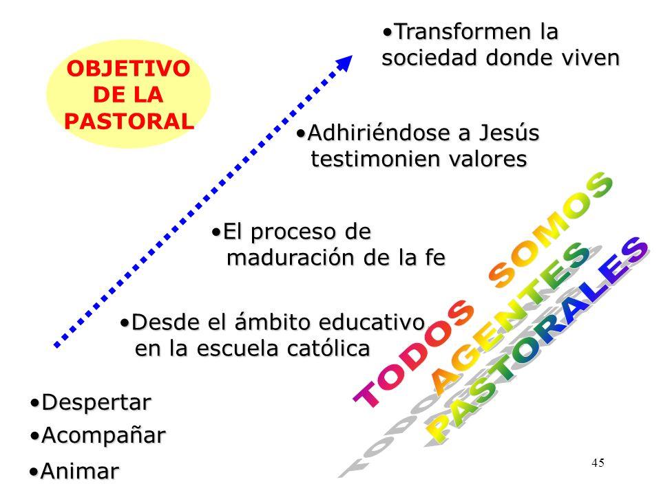 44 NUEVO CONTEXTO DE LA ESCUELA CATOLICA 1.Pastoral en sentido restringido: Dinámica del proceso evangelizador que la Iglesia realiza con los ya bauti