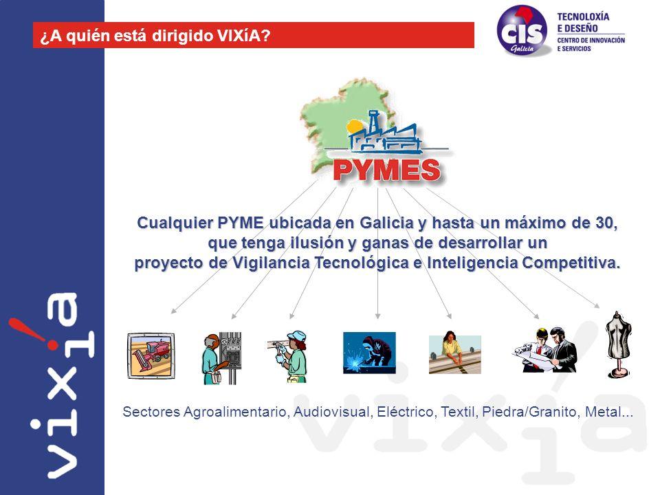 Cualquier PYME ubicada en Galicia y hasta un máximo de 30, que tenga ilusión y ganas de desarrollar un proyecto de Vigilancia Tecnológica e Inteligenc