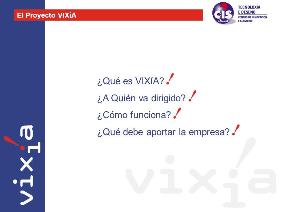 ¿Qué es VIXíA? ¿A Quién va dirigido? ¿Cómo funciona? ¿Qué debe aportar la empresa? El Proyecto VIXíA